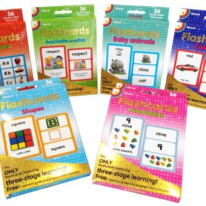 Kids Giant Flashcard Bundle