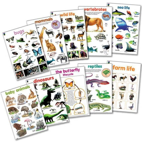 Animal world wall chart posters