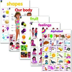 Basic visual education and learning wall chart posters