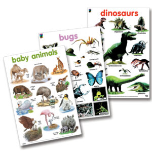 wall chart poster 3 pack animal collection